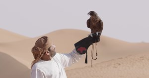 BENTLEY Falconry B-Roll 2 4K.mp4